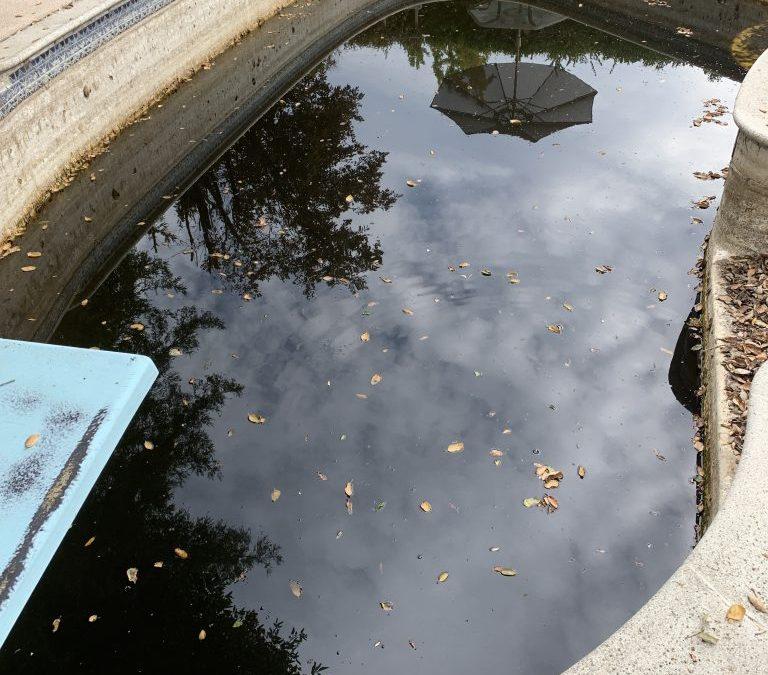 dirty pool in pleasanton ca