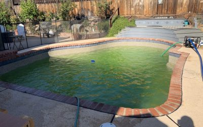 Save Money on Green Colored Pools